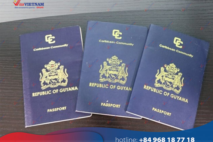 Best way to get Vietnam visa on arrival from Guyana