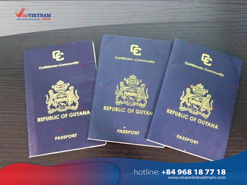 Best way to get Vietnam visa on arrival from Guyana